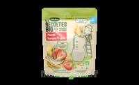 Blédina Les Récoltes Bio Muesli Préparation Banane Fraise B/200g à MONTEREAU-FAULT-YONNE