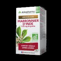 Arkogélules Marronnier d'Inde Bio Gélules Fl/45 à MONTEREAU-FAULT-YONNE