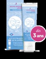 Calmosine Baume à Lèvres Extraits Naturels De Plantes T/20ml à MONTEREAU-FAULT-YONNE