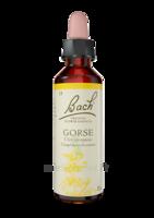 Fleurs de Bach® Original Gorse - 20 ml à MONTEREAU-FAULT-YONNE
