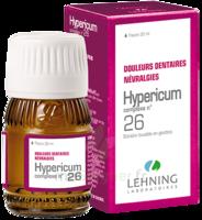 Lehning COMPLEXE HYPERICUM N° 26 Solution buvable Fl/30ml à MONTEREAU-FAULT-YONNE