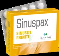 Lehning Sinuspax Comprimés à Croquer 3plq/20 à MONTEREAU-FAULT-YONNE