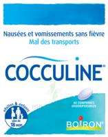 Boiron Cocculine Comprimés orodispersibles B/40 à MONTEREAU-FAULT-YONNE