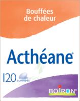 Boiron Acthéane Comprimés B/120 à MONTEREAU-FAULT-YONNE